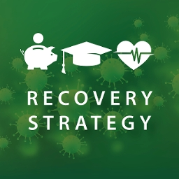 recovery strategy 2020